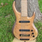 Austin TX 5-String Bass For Sale